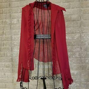 Super sharp sheer blouse with ruffles